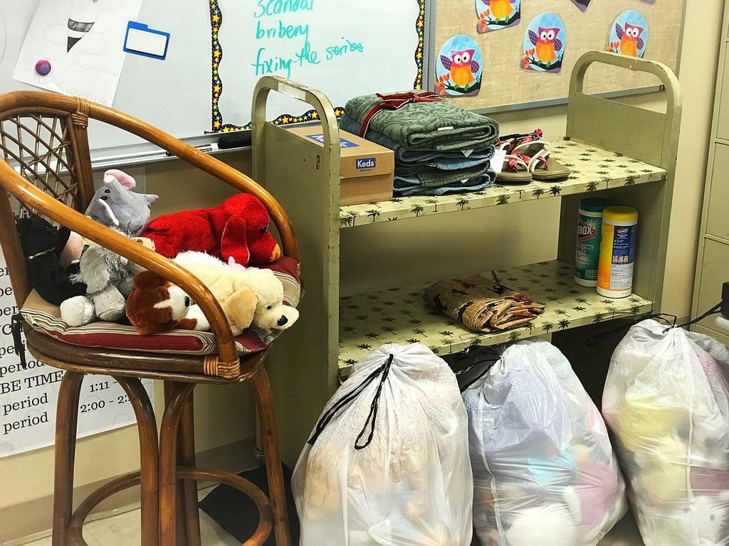 These are just a few examples of the Pride Store donations. All of these were donated by Mrs. Arens' homeroom class.