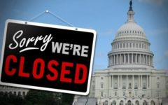 The Government Shutdown