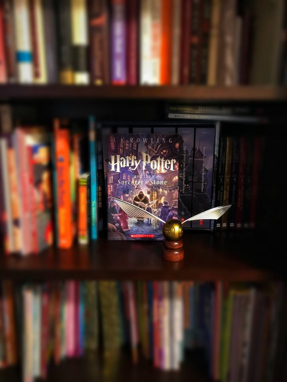 Harry Potter and the Sorcerer's Stone (aka the Philosopher's Stone) is the first book in the Harry Potter series.
